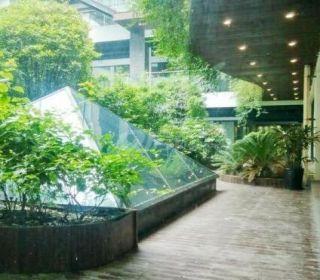中庭园区的清洁标准